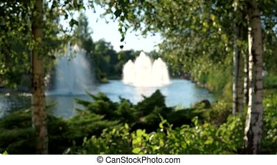 Blurred pond with fountains. Blurry summer nature...