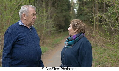 A beautiful elderly couple, walking in the park, talking kindly. Good mood, positive life. Slow motion