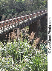railroad bridge on Pingxi line in Shifen, Taiwan