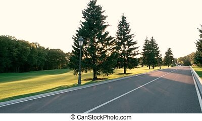 Asphalt road and nature. Green lawn with trees. All roads...