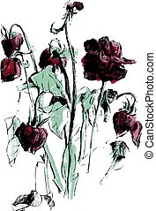 A drawing of dried roses - Picture of dead dried flowers and...