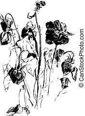 A drawing of dried roses - Black and white picture of dead...