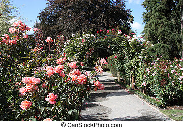 Christchurch botanic garden - Christchurch Botanic Gardens...