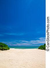 tropische, sandstrand