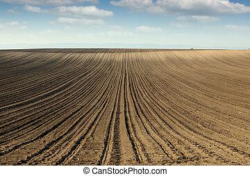 gepflügt, Fruehjahr, Feld, Jahreszeit, landwirtschaft, landschaftsbild
