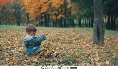 cute little brother and sister playing in the autumn park, girl throws on boy yellow fallen leaves 4k