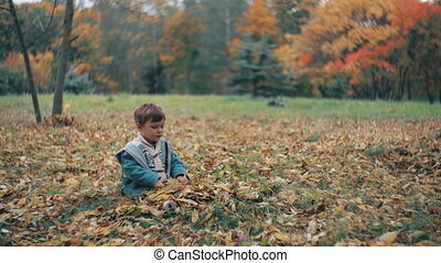 cute little boy playing in the autumn park, sits on grass...