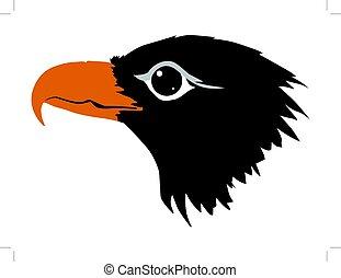 eagle - silhouette of eagle