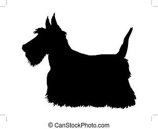 scottish terrier - silhouette of scottish terrier