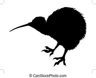 kiwi bird - silhouette of kiwi bird