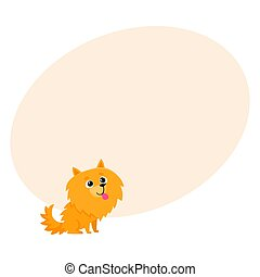 Cute little long haired Pomeranian, spitz dog character,...