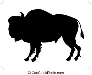 buffalo - silhouette of buffalo
