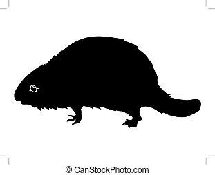 beaver - silhouette of beaver