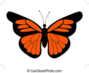 monarch butterfly - vector illustration of monarch butterfly