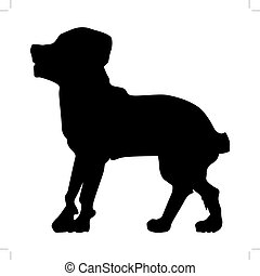 rottweiler - silhouette of rottweiler