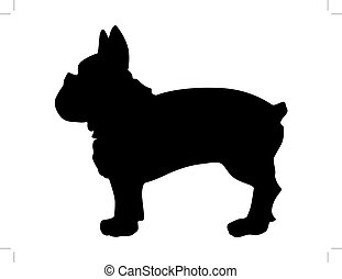 french bulldog - silhouette of french bulldog