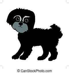 Maltese dog - silhouette of Maltese dog
