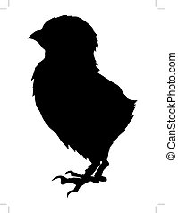 baby chick - silhouette of baby chick