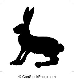 hare - silhouette of hare