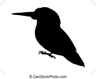 kingfisher - silhouette of kingfisher