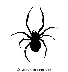 spider - silhouette of spider