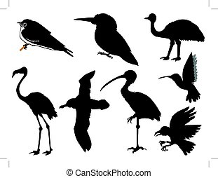 birds - set of silhouettes of birds