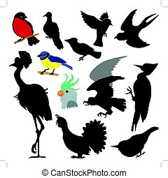 different birds - set of silhouettes of birds