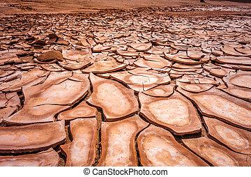 Cracked ground in Valle de la muerte desert, San Pedro de...