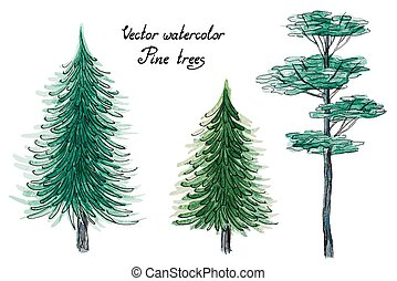 Vector watercolor pine trees - Vector set of hand drawn...