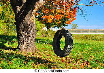 tire swing at the end of summer - autumn colours on a tire...
