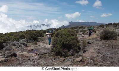 Track on Kilimanjaro on the Machame Route Whiskey, 2 day