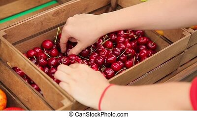 Girl puts cherries in boxes.