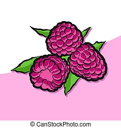 Colored Raspberries Vector Artwork, Fresh Food Collection,...