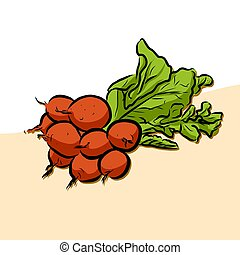 Colored Garden Radish Vector Artwork, Fresh Food Collection,...