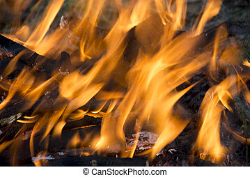 texture elements of fire flames - fire texture elements of...