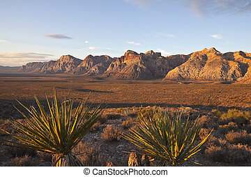 Warm dawn light at Red Rock National Conservation Area -...