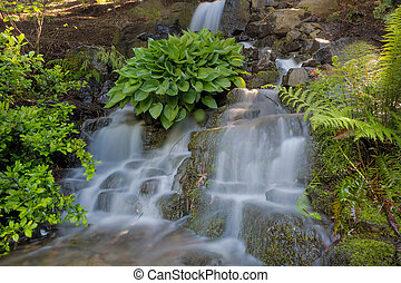 Waterfall at Crystal Springs Rhododendron Garden in Portland...