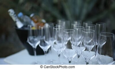 Glasses of champagne at the reception.