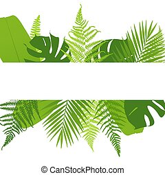 Banner with ferns. Tropical leaves. Vector illustration.