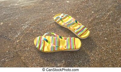 Flip flops floating on water. Seashore and sunlight. Beach...