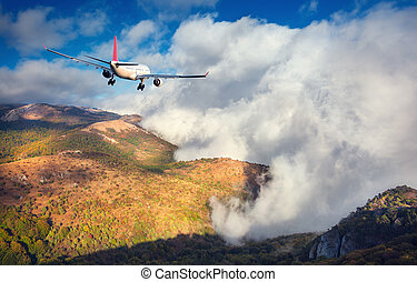 Landscape with white passenger airplane - Airplane....