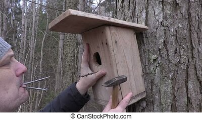 Man with birdhouse,hammer and nails near tree