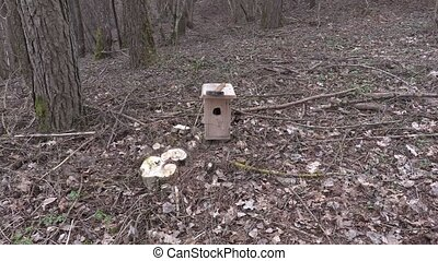 Man take birdhouse and walking away