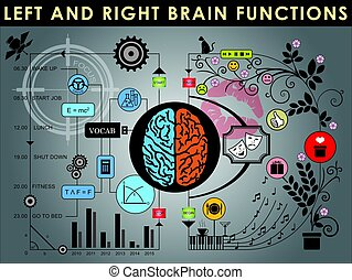 Brain 002 - Left and right brain functions, Cerebral...