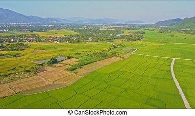 Aerial Moving Over Rice Fields near Roads against Village -...
