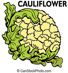 Cauliflower - An image of a head of cauliflower