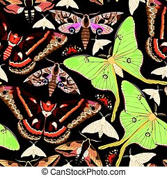 Flying moths seamless - Flying moths of different species...