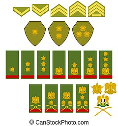 Insignia Syrian army. The illustration on a white...