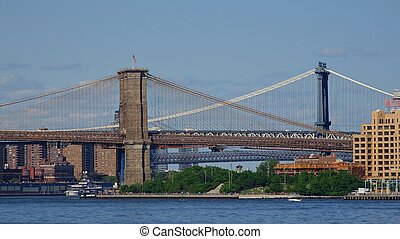 Brooklyn Manhattan Bridges