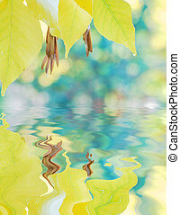 Autumn background with yellow leaves reflected in a water -...